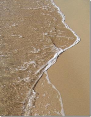 1341545_sea_shore