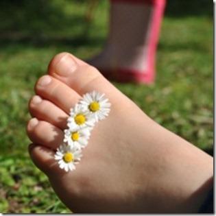1342923_daisy_feet_1