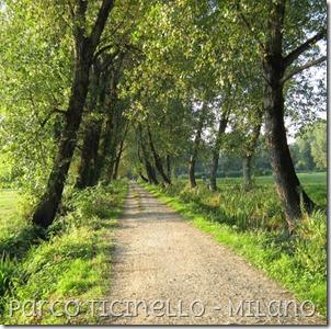Ticinello3