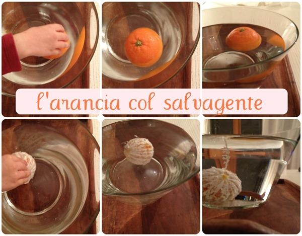 arancia-salvagente