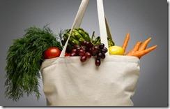 eco-shopper-tela