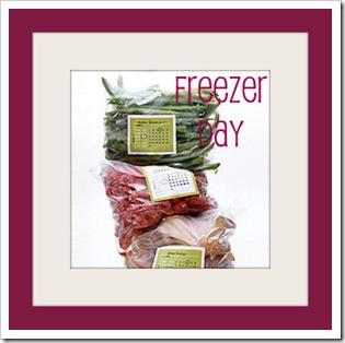 etichette-freezer