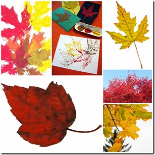 timbri-foglie