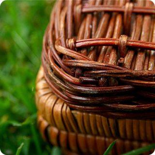 10 cose da non dimenticare nel picnic
