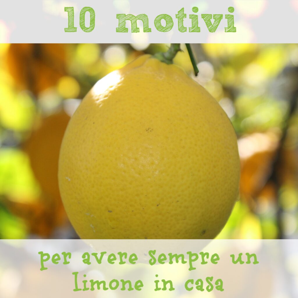 10 motivi per avere sempre un limone in casa babygreen for Avere un costo costruito casa