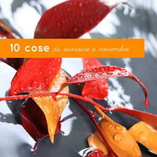 10 cose da ricordare a novembre