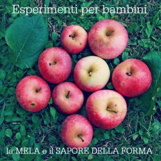 Esperimenti per bambini: la mela e il sapore della forma