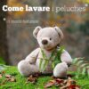 come-lavare-peluches-sq