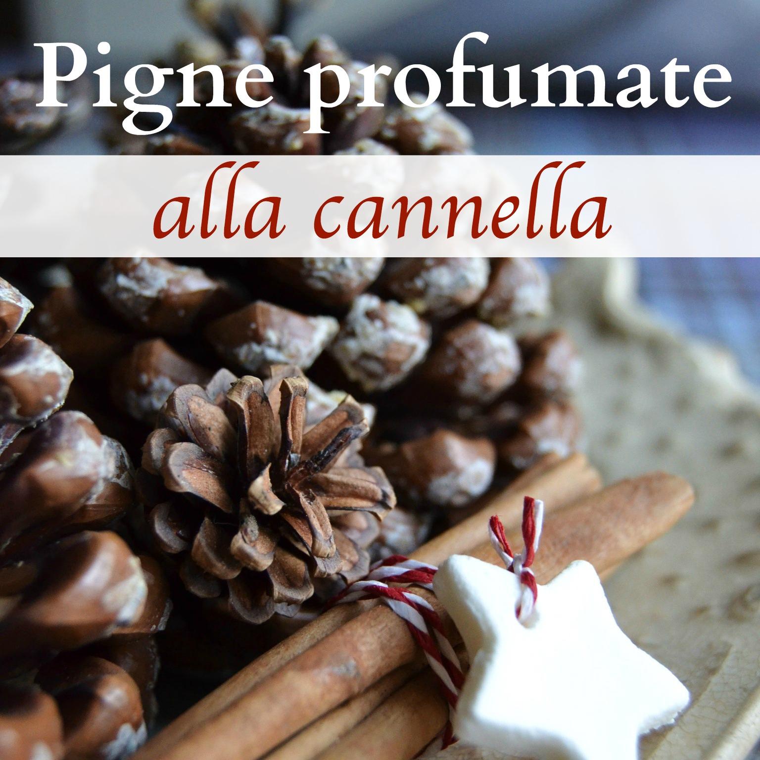 pigne-profumate-alla-cannella