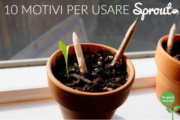 matita-sprout