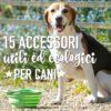 15 accessori utili (ed ecologici) per cani