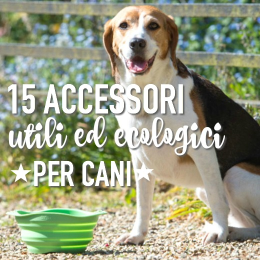accessori-per-cani