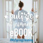 pulizie-di-primavera-ebook