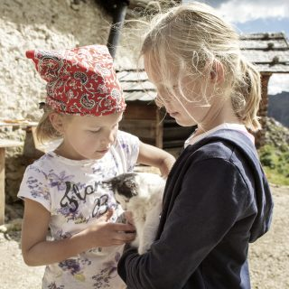 La gita perfetta: Trentino in fattoria didattica