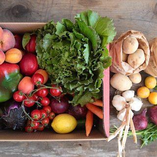 La mia visita a portaNatura: come nasce il box di frutta e verdura bio