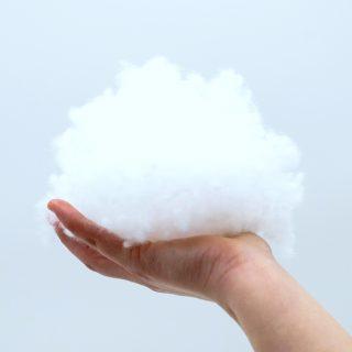 Acari della polvere: come eliminarli