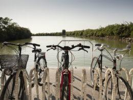 vacanze in bici a bibione